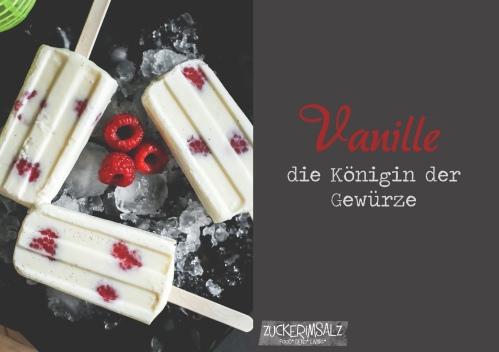 2-vanille-eis-homemade