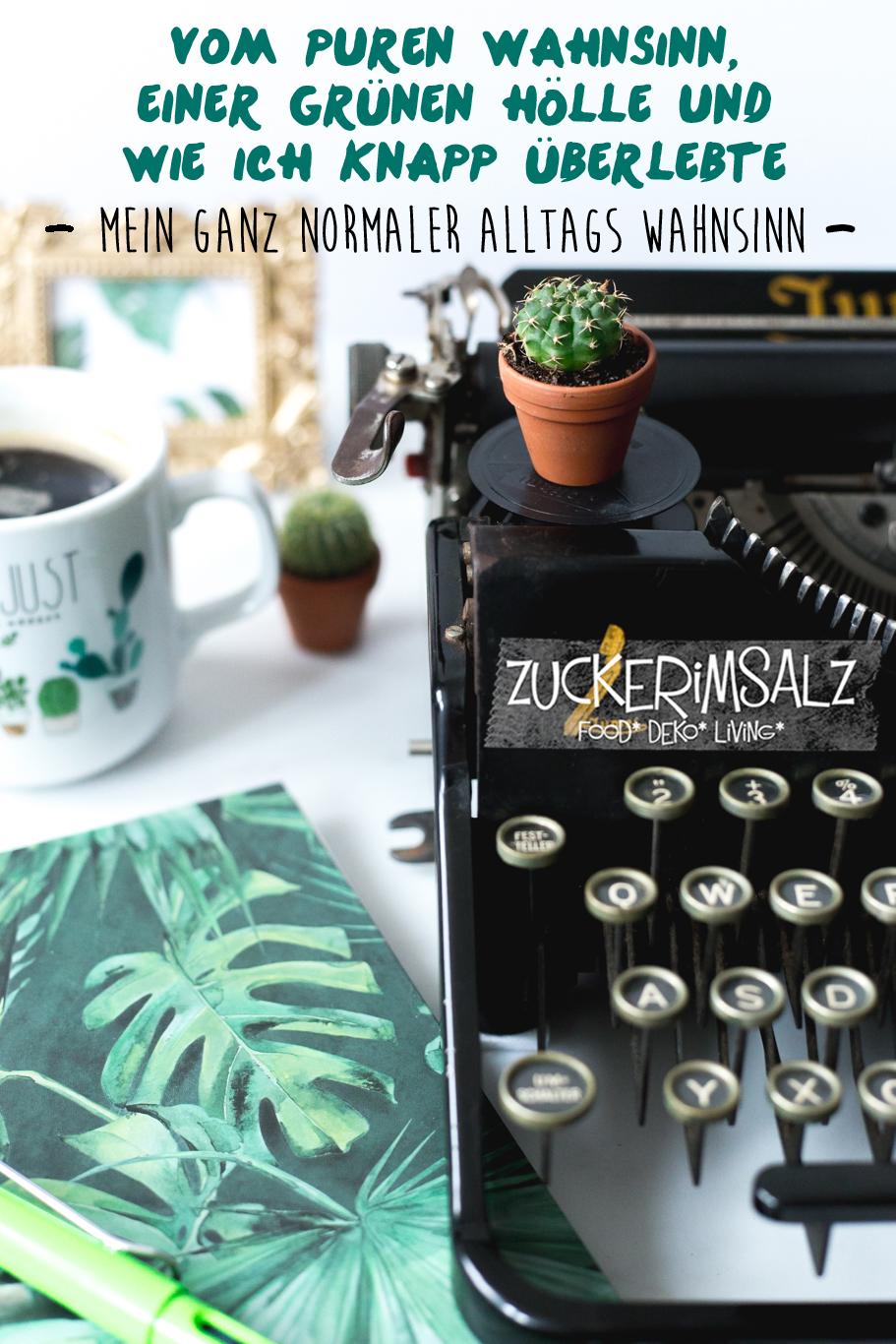 Wahnsinns Alltag ... die erfrischende Kolumne über meinen Leben - cover