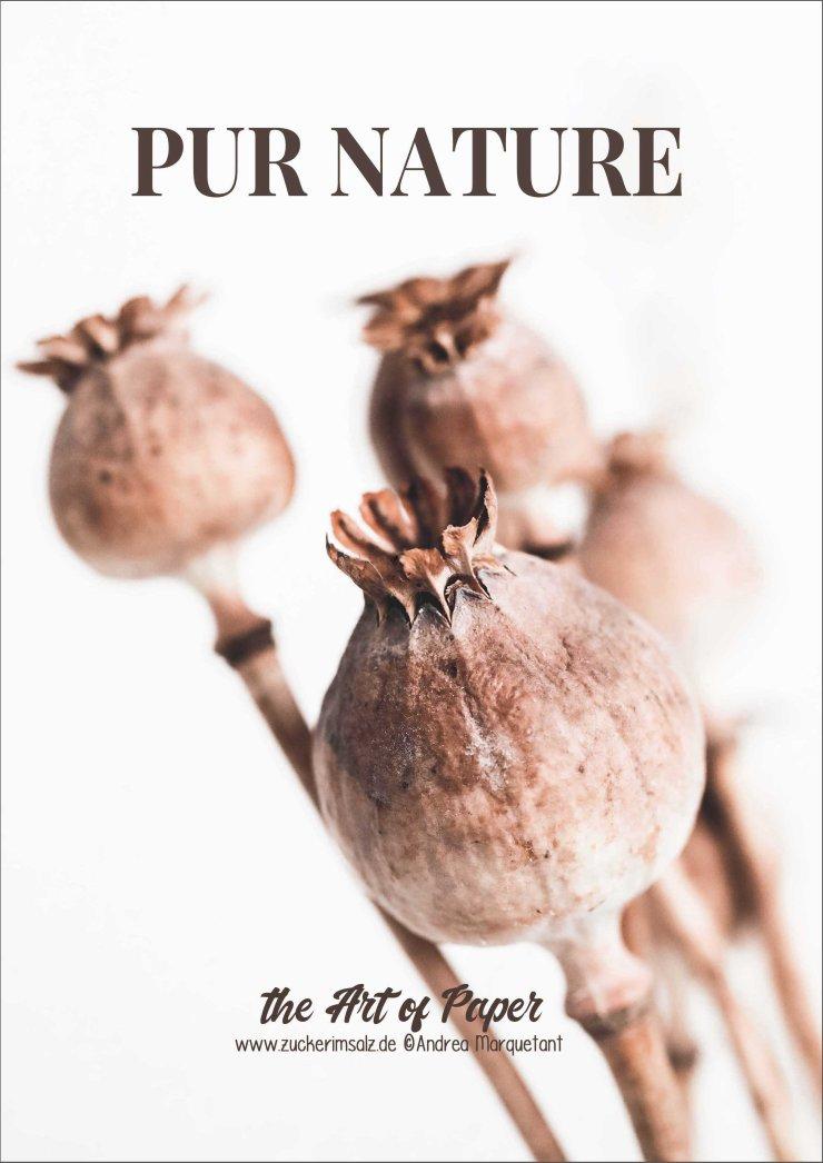 Herbst, Pur Nature, Pflanzen, Natur, Motivation, Spruch, Wandkunst, Bilder, Poster, Plakat, Freebie, kostenlos, Art of Paper, Andrea Marquetant, Zuckerimsalz